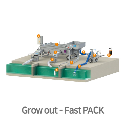 Grow out - Fast Pack